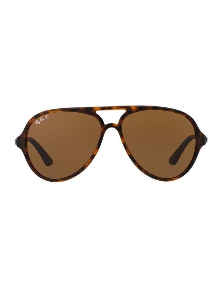 0RB4235 1508695006 Polarised Sunglasses image 2