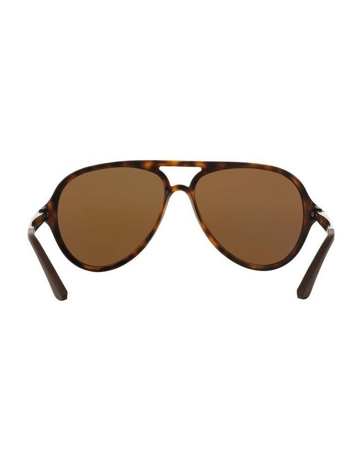 0RB4235 1508695006 Polarised Sunglasses image 7