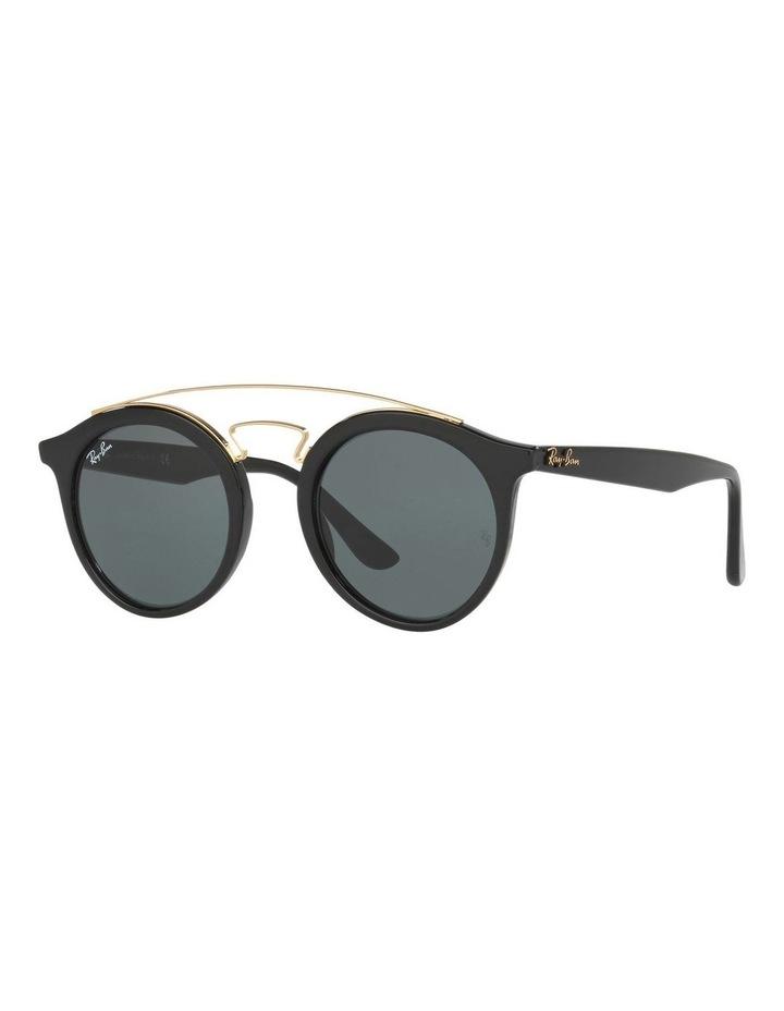 RB4256 399010 Sunglasses image 2