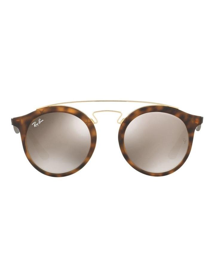 RB4256 399023 Sunglasses image 1