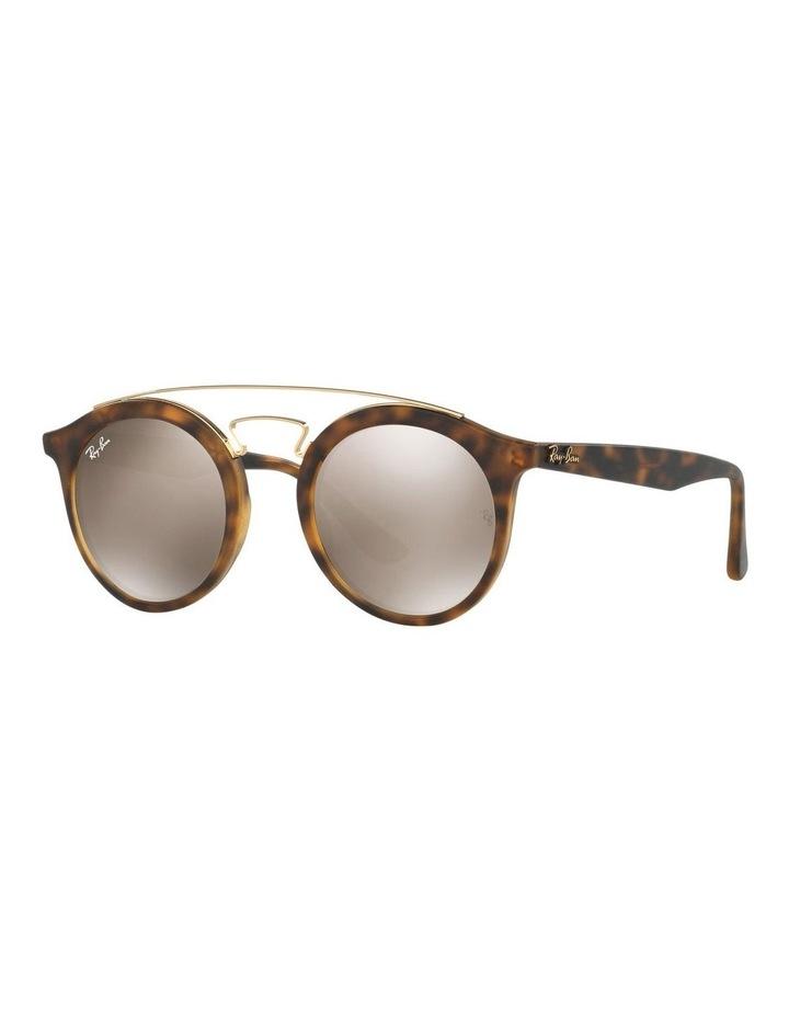 RB4256 399023 Sunglasses image 2