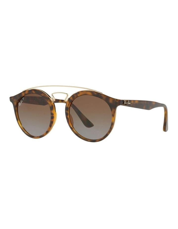RB4256 399026 Polarised Sunglasses image 2
