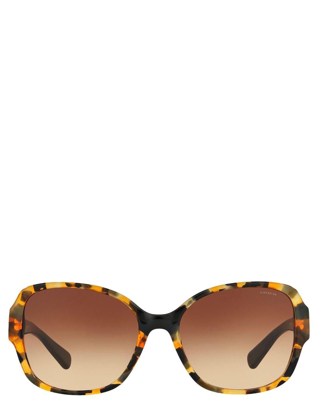 ea14de0d0463 ... 50% off coach hc8166 core sunglasses myer online 3ce49 32167