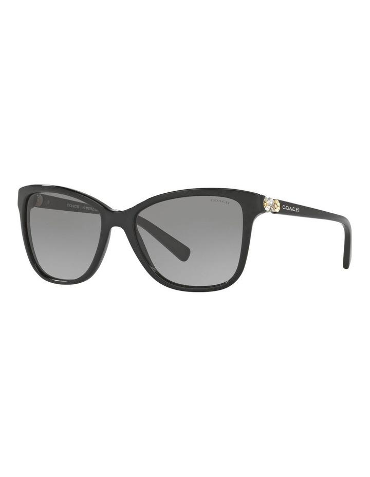 HC8187B 395892 Sunglasses image 2