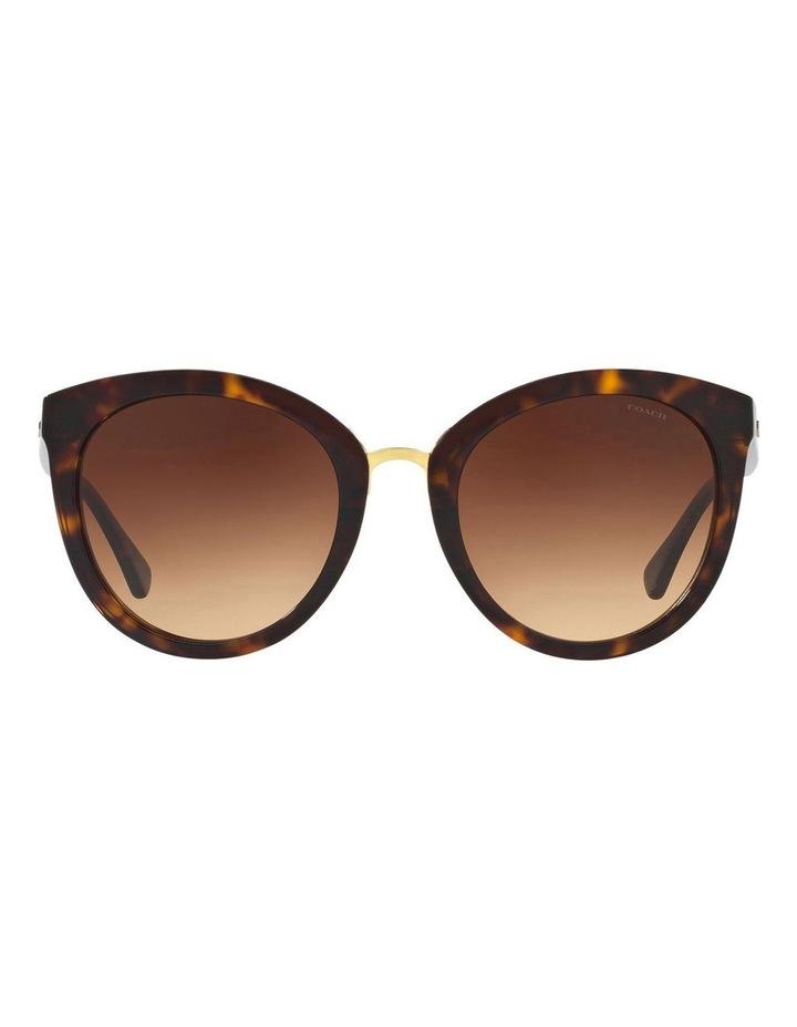 HC8199D 405799 Sunglasses image 1