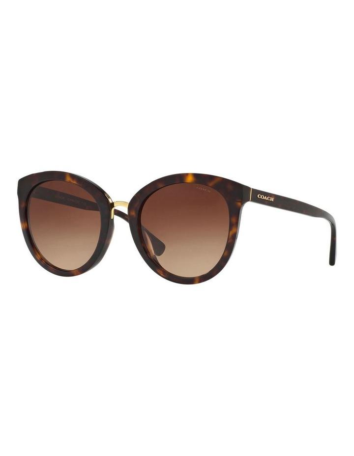 HC8199D 405799 Sunglasses image 2