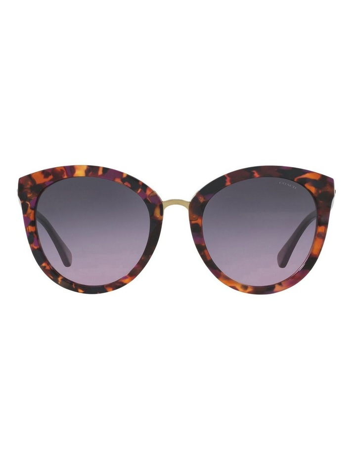 HC8199D 403550 Sunglasses image 1