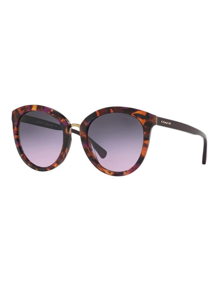 HC8199D 403550 Sunglasses image 2
