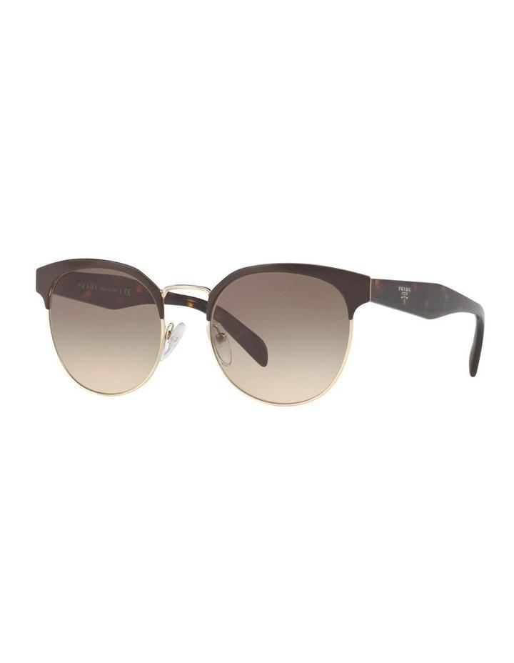 Brown Browline Sunglasses PR 61TS 404602 image 1