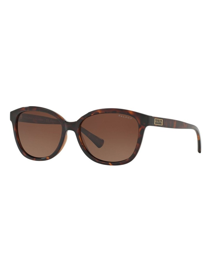 RA5222 404379 Polarised Sunglasses image 3