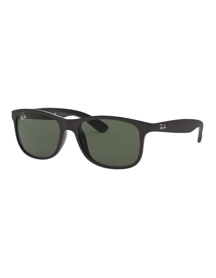 0RB4202F Andy 1513108005 Sunglasses image 1