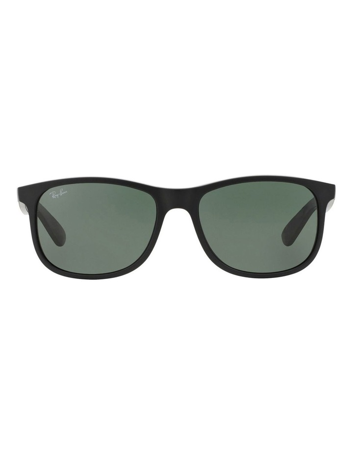 RB4202F 371169 Sunglasses image 1