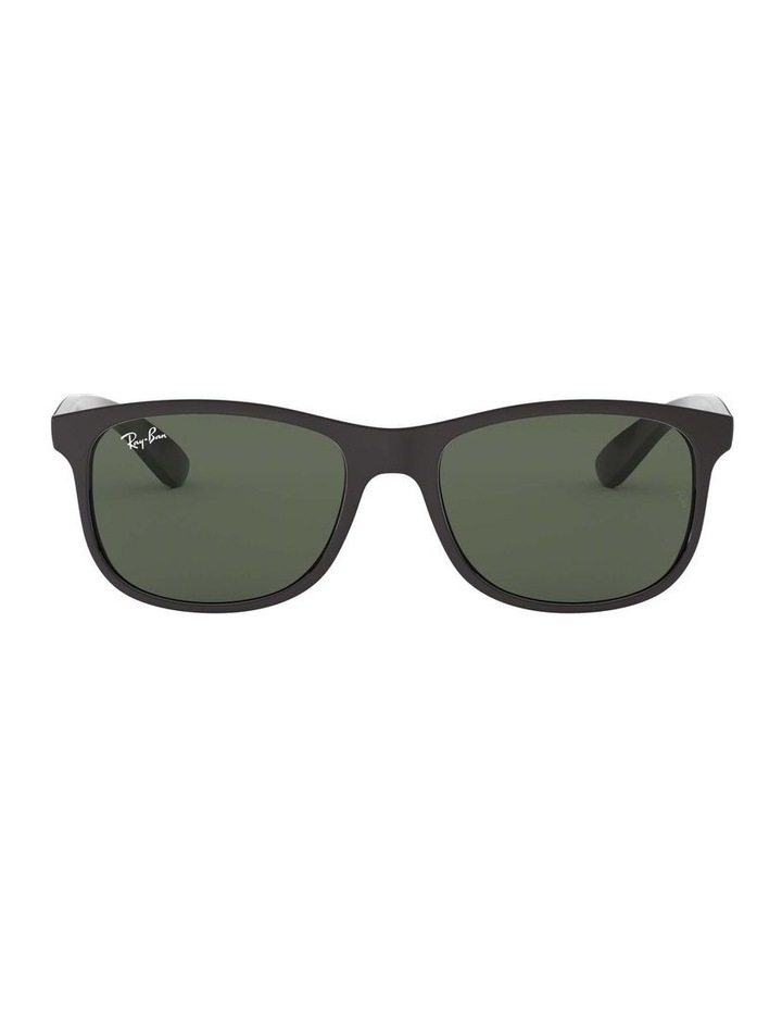 0RB4202F Andy 1513108005 Sunglasses image 2