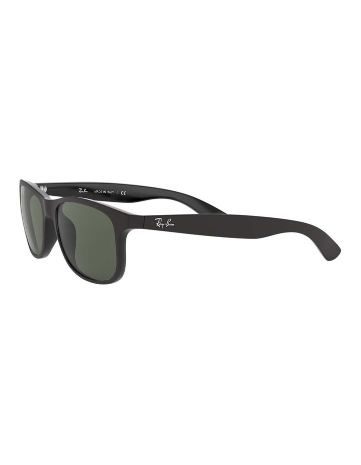 0RB4202F Andy 1513108005 Sunglasses image 3