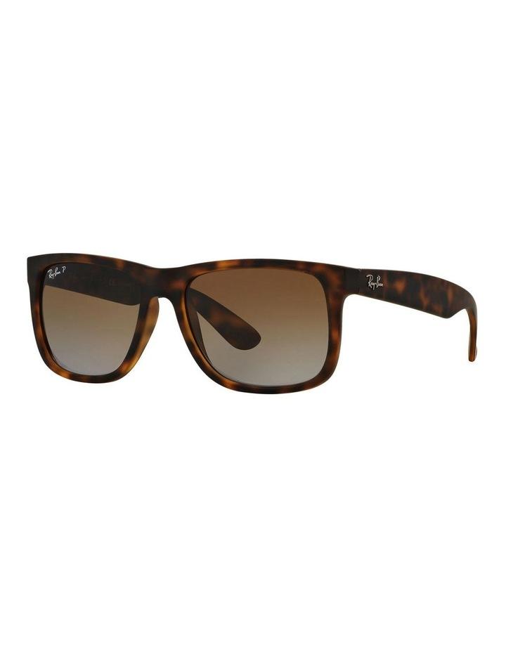 RB4165F 386486 Polarised Sunglasses image 2