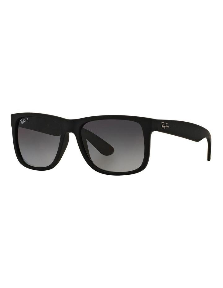 RB4165F 386485 Polarised Sunglasses image 2