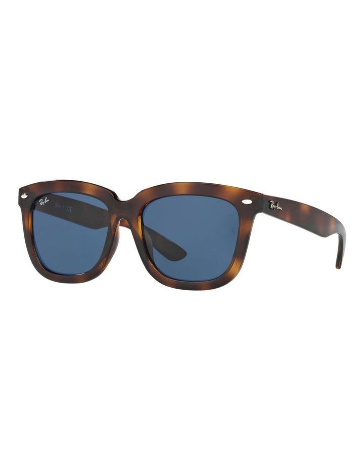 RB4262D 400799 Sunglasses image 2
