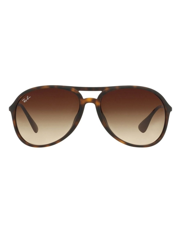 RB4201F 359495 Sunglasses image 1