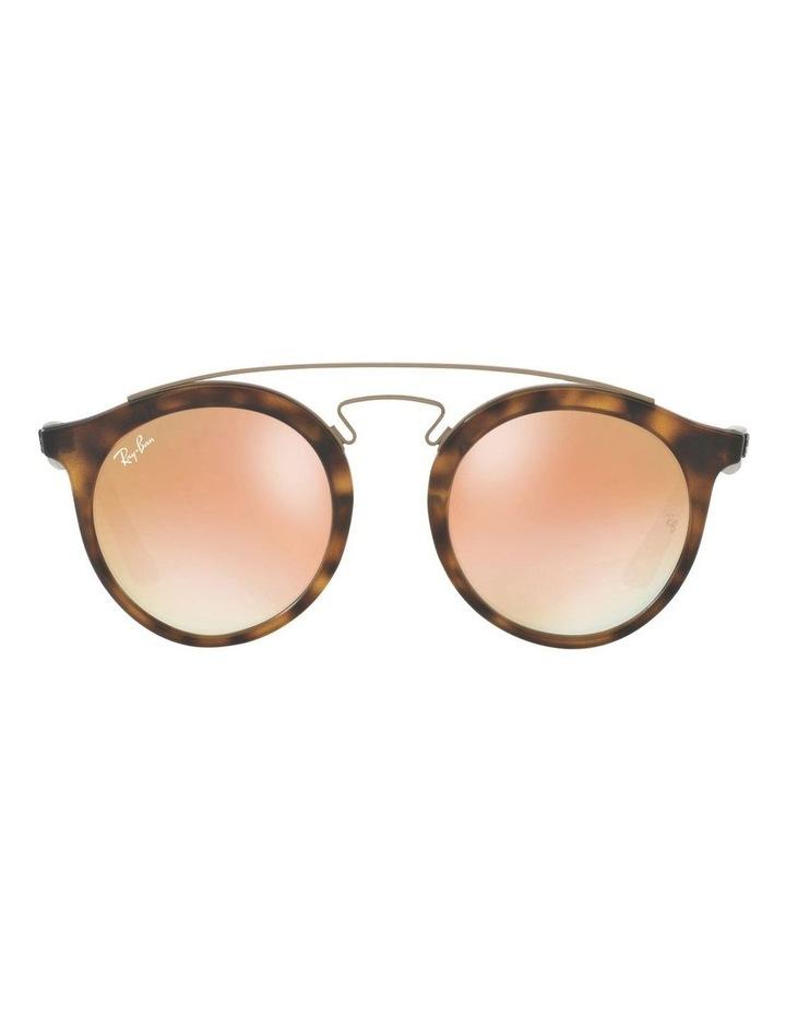 RB4256 401098 Sunglasses image 1
