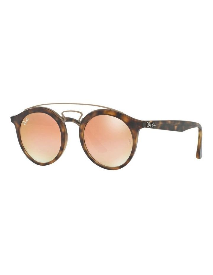 RB4256 401098 Sunglasses image 2