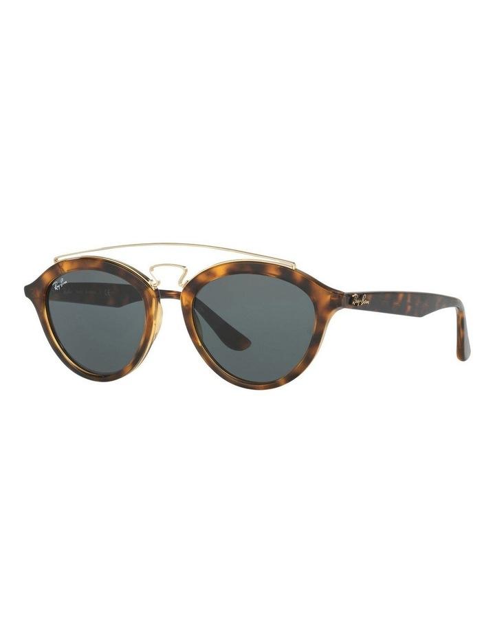 0RB4257 New Gatsby Ii 1510183001 Sunglasses image 2