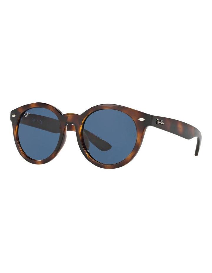 RB4261D 401231 Sunglasses image 2