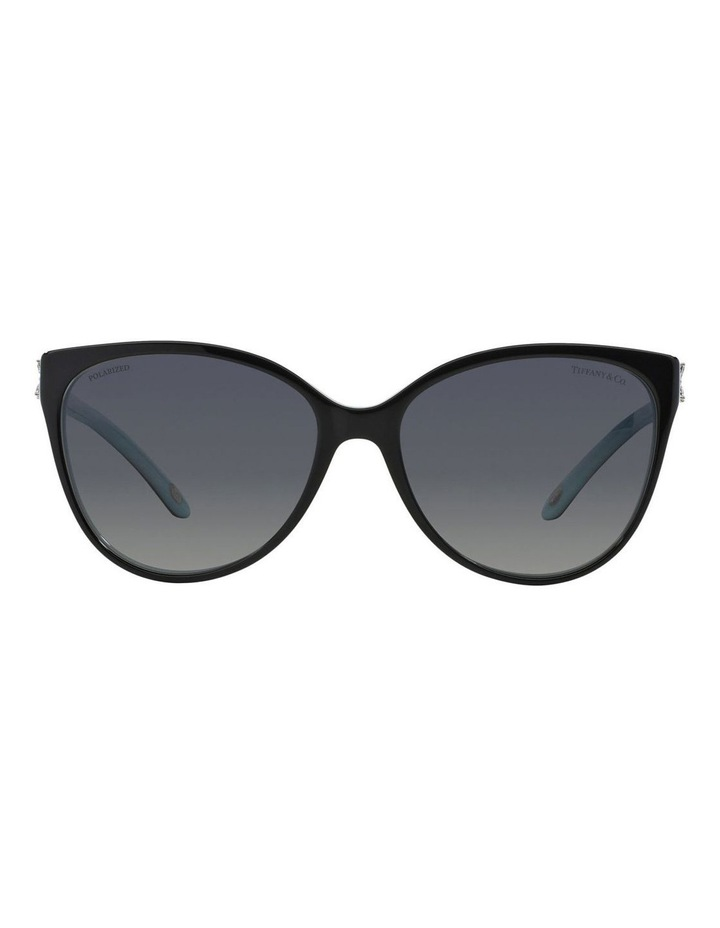 3438886fbfbb TF4089B 360460 Polarised Sunglasses image 1