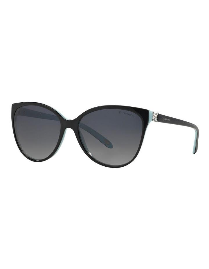 TF4089B 360460 Polarised Sunglasses image 2