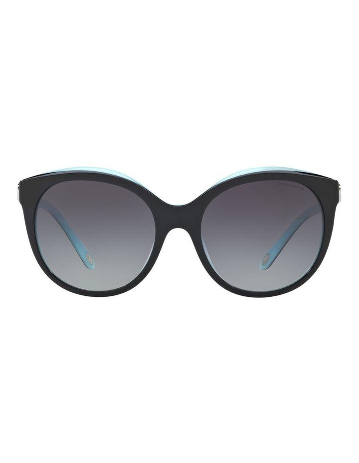 TF4133 403496 Sunglasses image 1