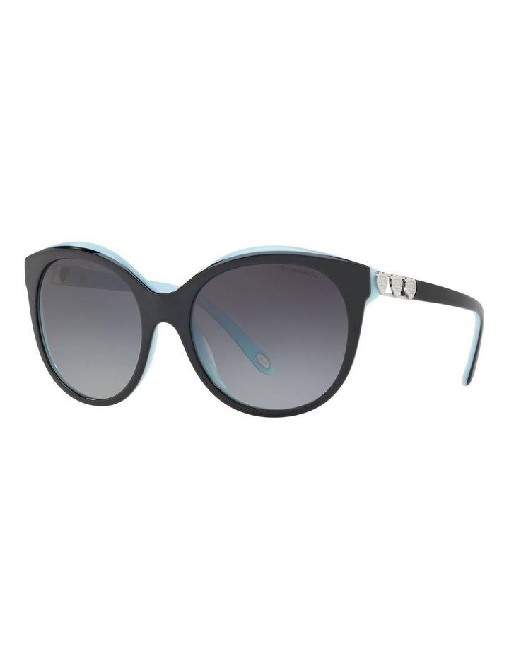 TF4133 403496 Sunglasses image 2