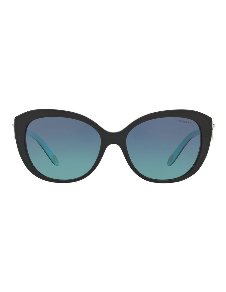 TF4130 401145 Sunglasses image 1