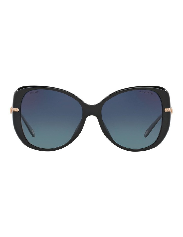 TF4126B 398425 Polarised Sunglasses image 1