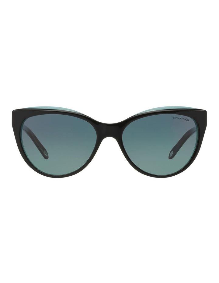 TF4119 391102 Sunglasses image 1