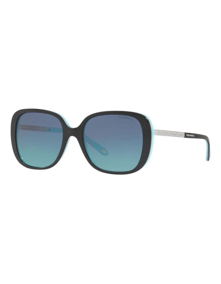 TF4137B 406504 Sunglasses image 3