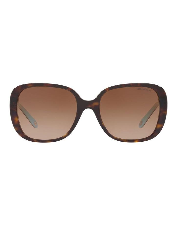 TF4137B 406503 Sunglasses image 2