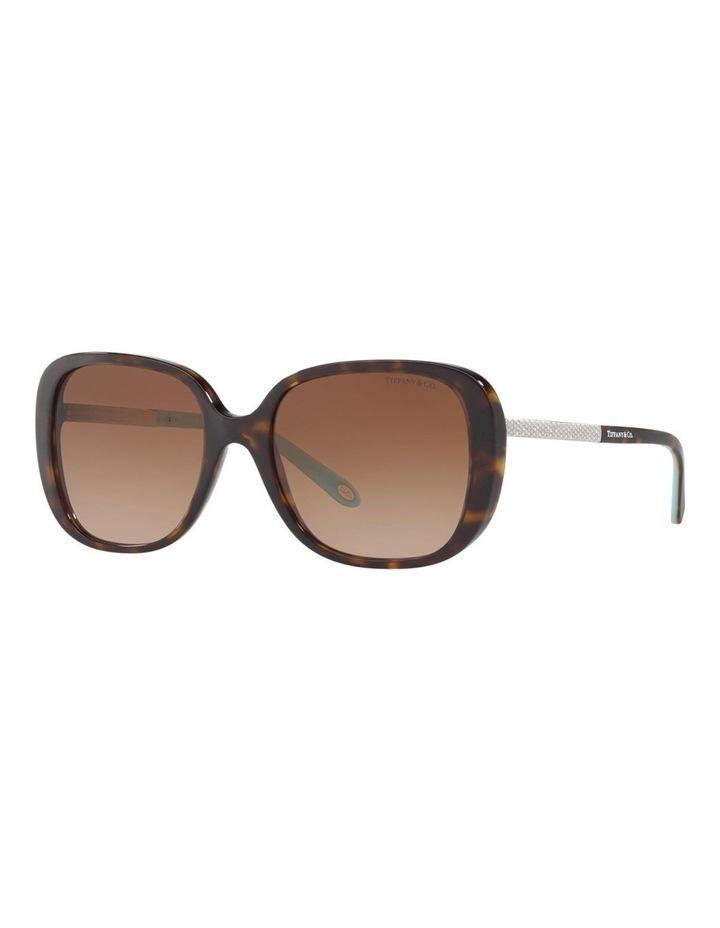 TF4137B 406503 Sunglasses image 3