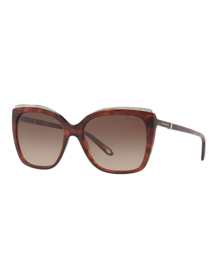 TF4135B 406501 Sunglasses image 3
