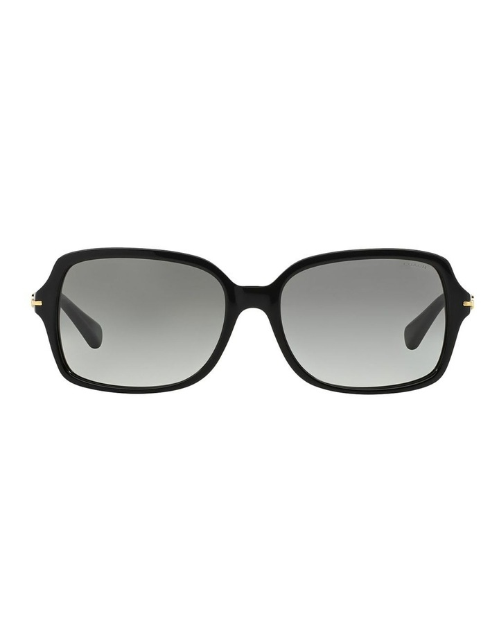 HC8116F 368591 Sunglasses image 1