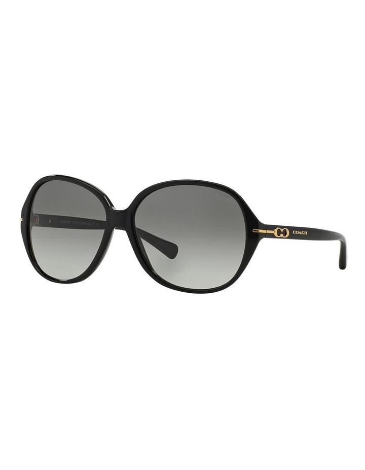 HC8118F 368597 Sunglasses image 2