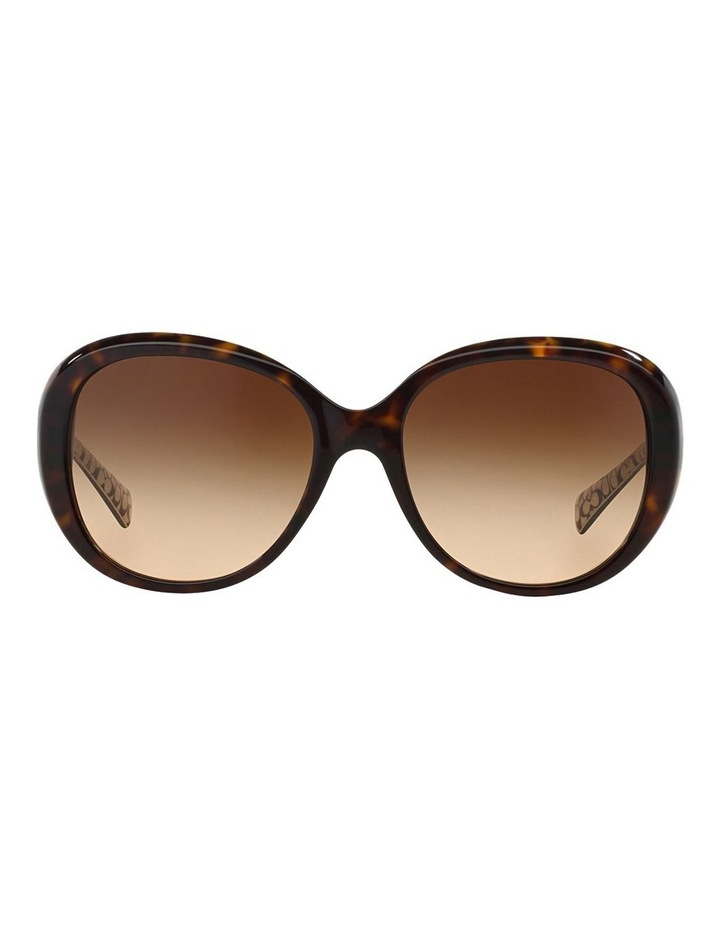 HC8120F 372071 Sunglasses image 1