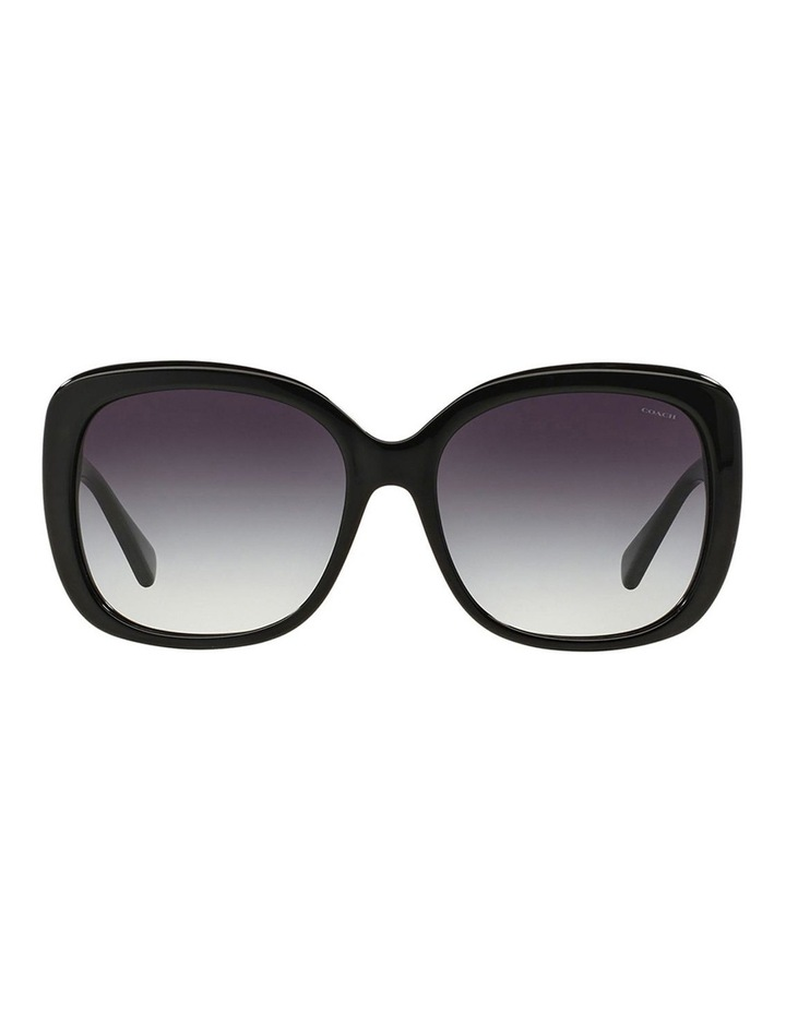 HC8158F 387591 Sunglasses image 1