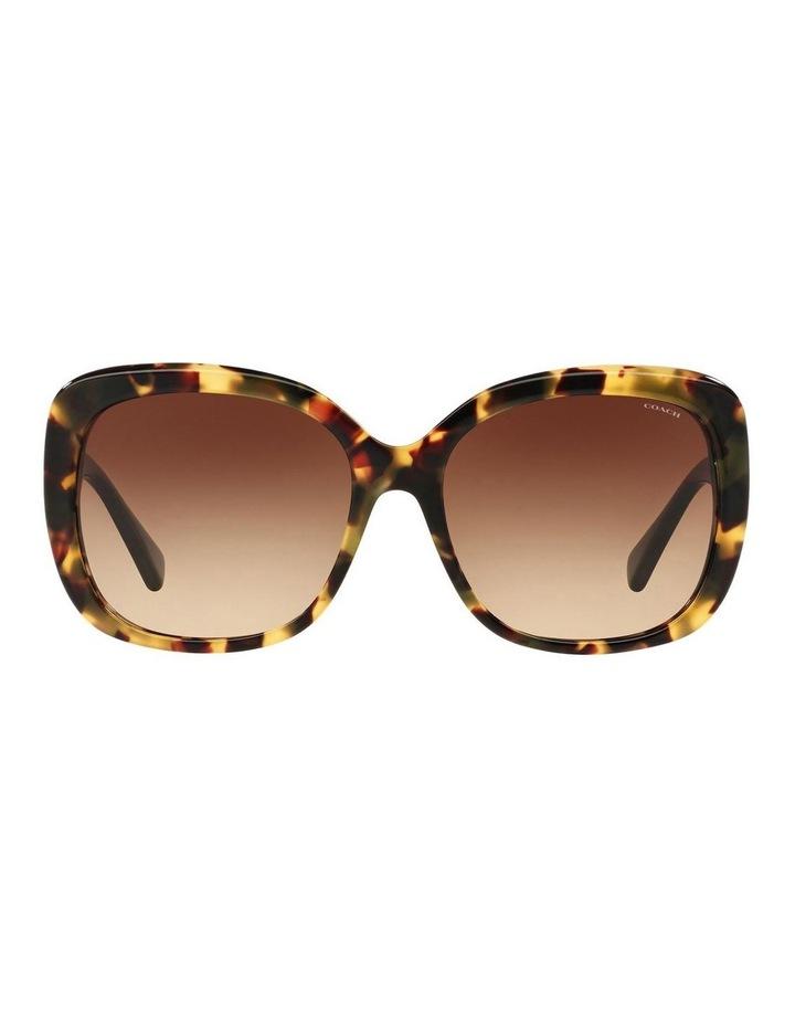 HC8158F 387592 Sunglasses image 1