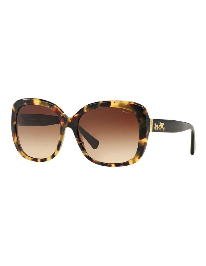 HC8158F 387592 Sunglasses image 2