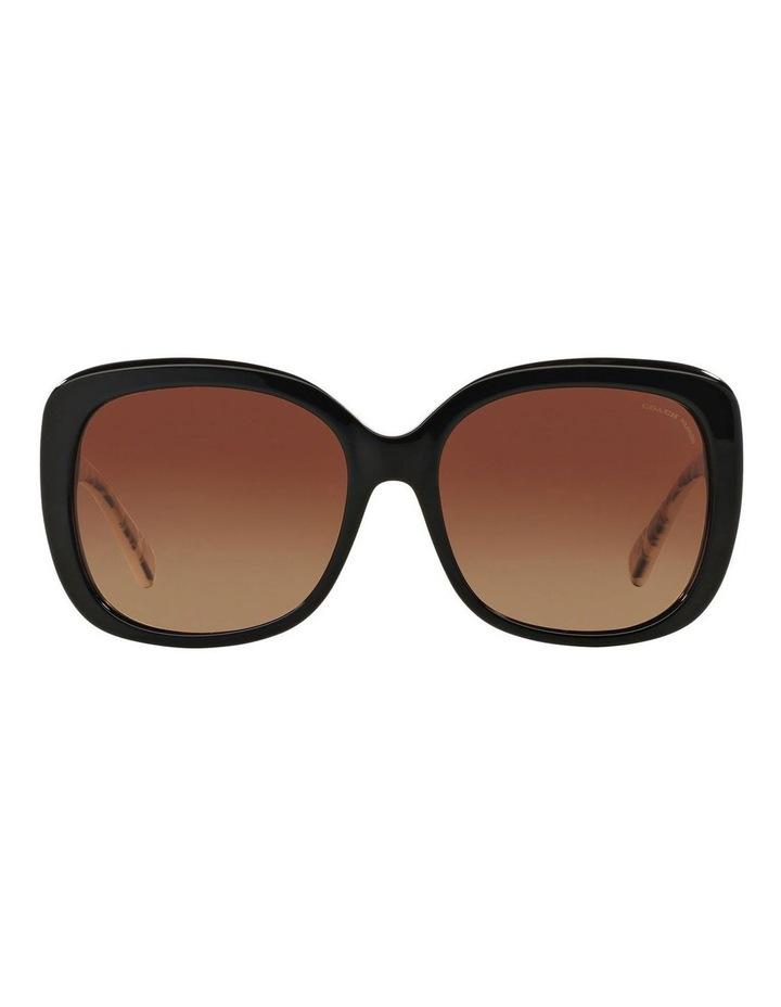HC8158F 387593 Polarised Sunglasses image 1
