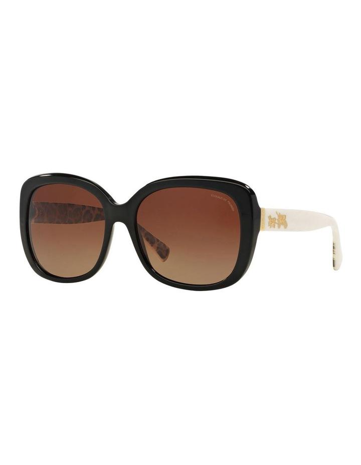 HC8158F 387593 Polarised Sunglasses image 2