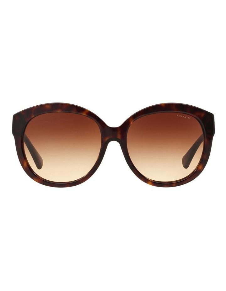 HC8159F 387663 Sunglasses image 1