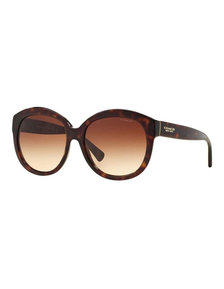 HC8159F 387663 Sunglasses image 2