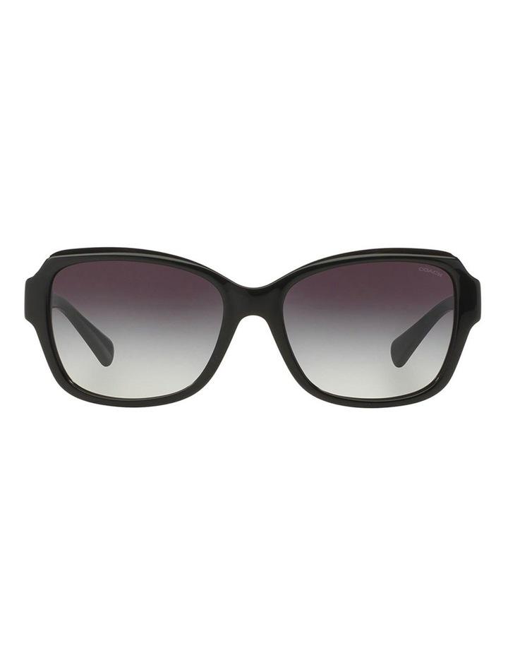 HC8160F 387665 Sunglasses image 1