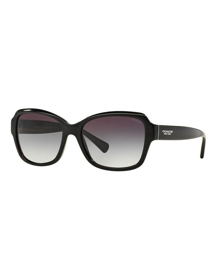HC8160F 387665 Sunglasses image 2