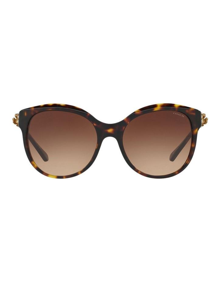HC8189F 401620 Sunglasses image 1